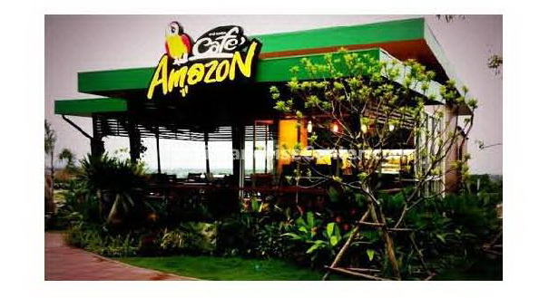 Band Analysis Cafe Amazon The Amazon Embrace 10