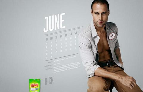 calendar liquid plumr June