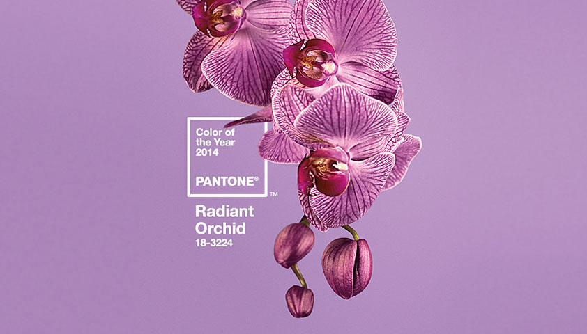 pantone color year 2014