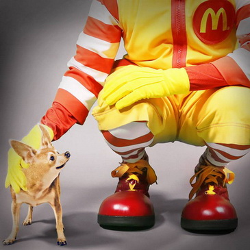 mcdonalds-taco-bell-ads chihuahua