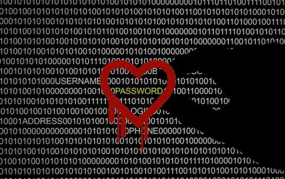 heartbleedpassword