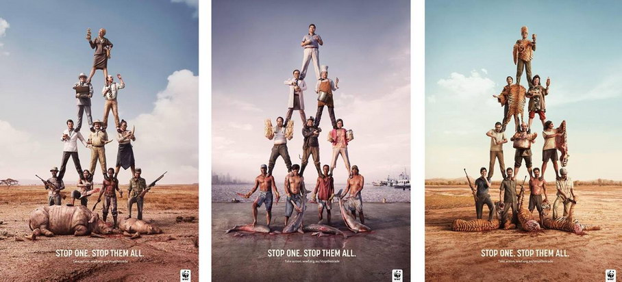 wwf stop them all illusion