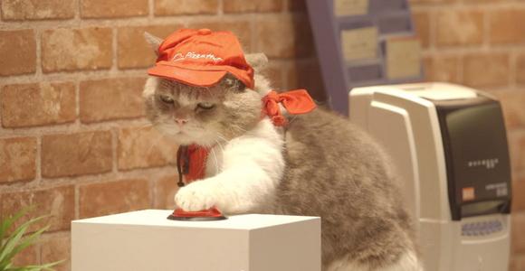 Pizza Hut Cat3