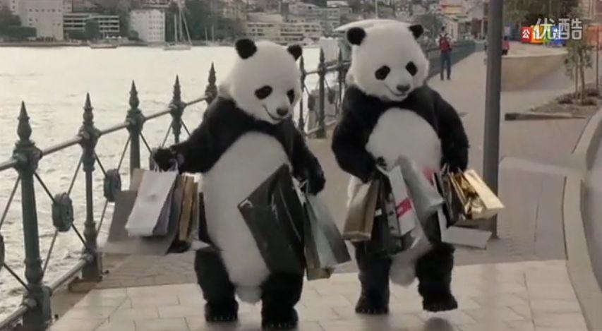 CCTV Good Tourist Panda2