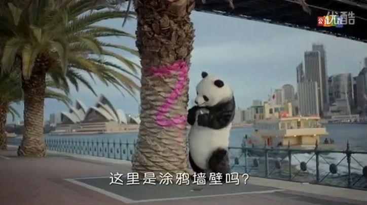 CCTV Good Tourist Panda3