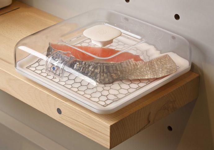 concept kitchen 2025 3