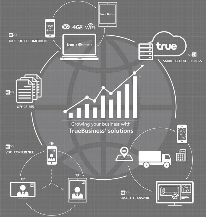 true smart business solution2
