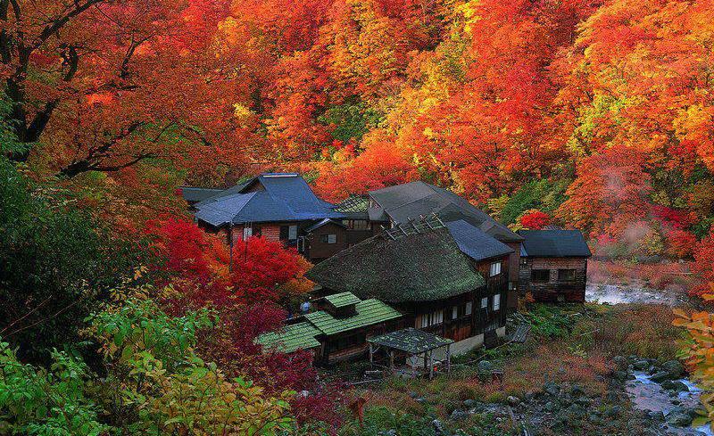 Resize Fall akita-Kuroyu onsen-crop