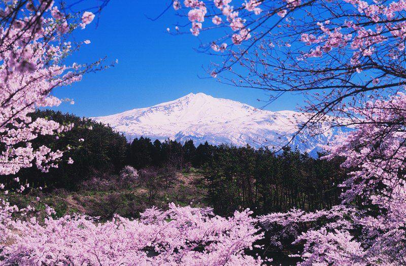 Resize Spring akita- Mt Chokaisan-crop